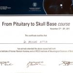 skull base course